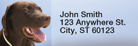 Chocolate Labradors Narrow Address Labels | LRRDOG-09