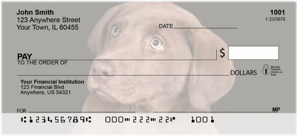 Chocolate Lab Puppies Personal Checks | DOG-55