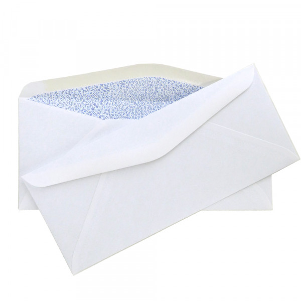#9 Security Envelope, 3 7/8'' x 8 7/8'' | ENV-03