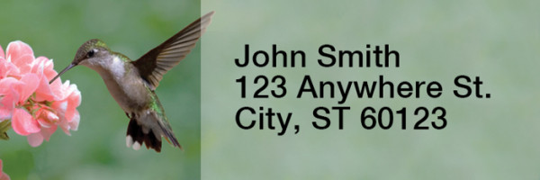 Hummingbirds Rectangle Address Labels | LRRANI-25